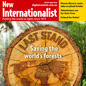 Global forests are fast disappearing. Time to stop the destruction.