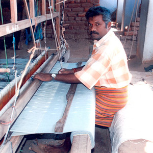 The Chetna Organic Cotton Project